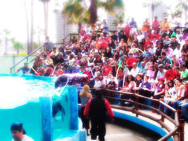 Conocer Gente Antofagasta 278831
